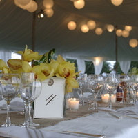 Inspiration, Reception, Flowers & Decor, white, Tables & Seating, Flowers, Orchids, Board, Tables, Settings, Lily kesselman photography