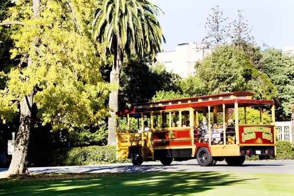 Wedding, Traditional, California, Oakland