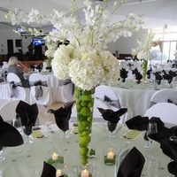 Reception, Flowers & Decor, white, green, Centerpieces, Flowers, Centerpiece, Orchids, Hydrangeas, Sage, Limes, Dees petals