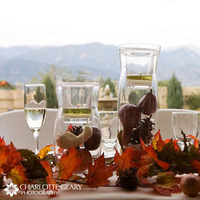 Reception, Flowers & Decor, Centerpieces, Fall, Autumn, Gourds