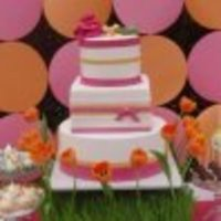 Cakes, orange, pink, cake, Sweet and saucy shop