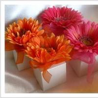 Inspiration, Reception, Flowers & Decor, Favors & Gifts, orange, pink, favor, And, Board, Daisy, Boxes, Tangerine, Gerber, Daisy days