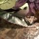 1375046372 small thumb ee092240f7abfa2c70122a02d69ee6ff