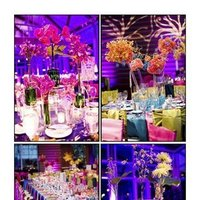 Reception, Flowers & Decor, yellow, orange, pink, purple, blue, green, Flowers, Sms photography