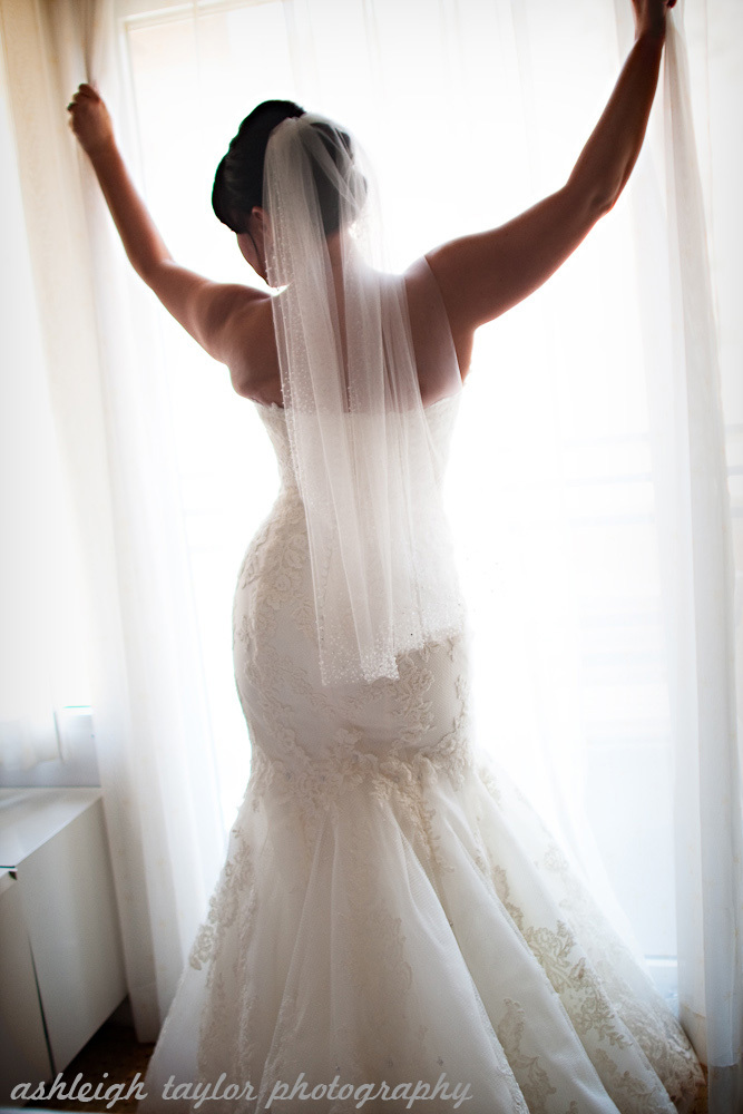 Wedding Dresses, Fashion, dress, Bride, Ashleigh taylor photography