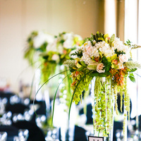 Reception, Flowers & Decor, green, black, Centerpieces, Flowers, Damask