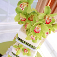 Flowers & Decor, Cakes, white, green, black, cake, Flowers, Bakery, Torrance, Damask, Trefethen