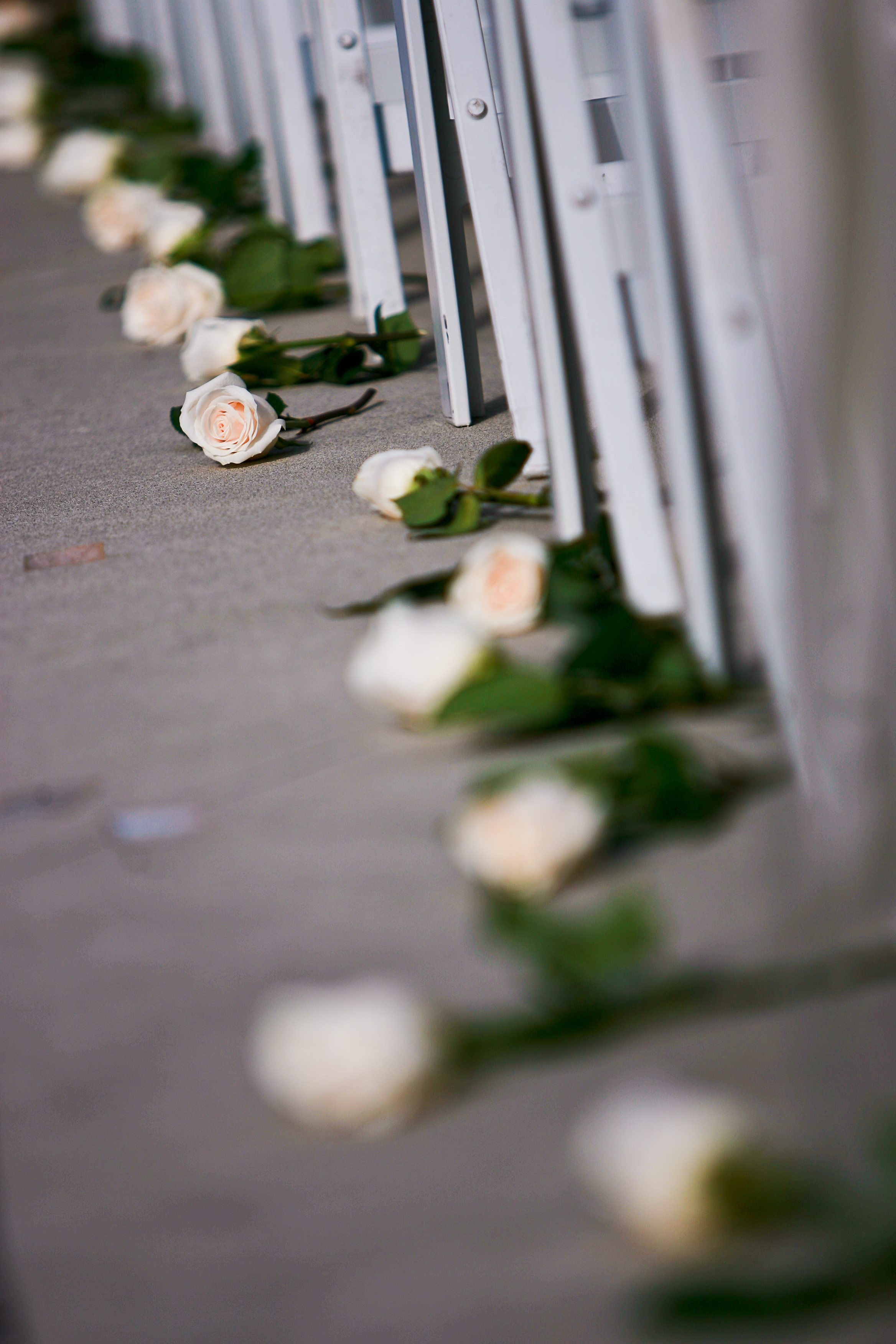 Ceremony, Flowers & Decor, white, green, black, Ceremony Flowers, Aisle Decor, Flowers, Aisle