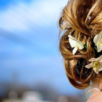 Beauty, Flowers & Decor, yellow, Flowers, Hair, Mckays photography
