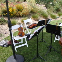 Ceremony, Reception, Flowers & Decor, Eloquence string quartet and trio