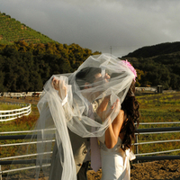 Wedding Dresses, Veils, Fashion, white, green, dress, Groom, Veil