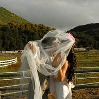 Wedding Dresses, Veils, Fashion, white, green, dress, Groom, Veil