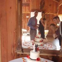 Cakes, orange, pink, red, brown, cake