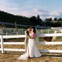 Wedding Dresses, Fashion, white, blue, green, dress, Groom, Scenery