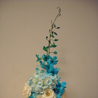Flowers & Decor, white, blue, Flowers, Orchids, Dendrobium, Renejohn designs