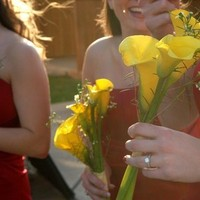 Flowers & Decor, Bridesmaids, Bridesmaids Dresses, Fashion, yellow, red, Bridesmaid Bouquets, Flowers, Shooting betsy, Flower Wedding Dresses