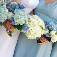 Flowers & Decor, Bridesmaids, Bridesmaids Dresses, Fashion, blue, silver, Bridesmaid Bouquets, Flowers, Shooting betsy, Flower Wedding Dresses