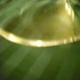 1375048253_small_thumb_e81427e217c6526eaadbdc87f1660c04