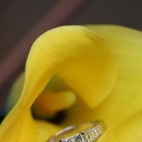 Flowers & Decor, Jewelry, yellow, silver, Engagement Rings, Flowers, Flower, Ring, Lily, Diamond, Jennifer bagwell photography