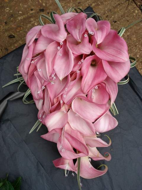 Flowers & Decor, pink, Flowers, The flower company