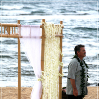 Ceremony, Flowers & Decor, Destinations, white, Hawaii, Beach, Ceremony Flowers, Flowers, Beach Wedding Flowers & Decor, Arch, Estate, Palm, Leis, Greg, Katie b photography, Loulu, Christopherson
