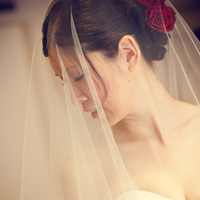 Beauty, Veils, Fashion, Bride, Portrait, Veil, Hair, Dave richards