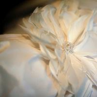 Wedding Dresses, Fashion, white, dress, Details