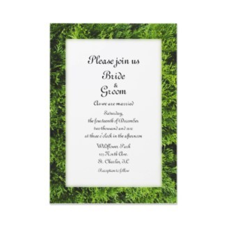 Stationery, green, invitation, Winter, Invitations, Wedding invitation, Winter wedding, Seasonal, Evergreen, A wedding collection by lora severson photography
