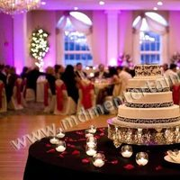 Reception, Flowers & Decor, pink, Lighting, Wedding, Chicago, Mdm entertainment