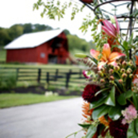 Ceremony, Inspiration, Reception, Flowers & Decor, orange, red, Rustic, Outdoor, Rustic Wedding Flowers & Decor, Board, Barn, Farm, Wood, Field, Pasture, Southall eden