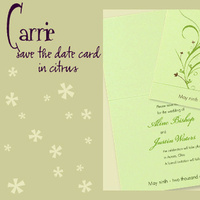Stationery, green, invitation, Invitations, Save-the-Dates, Save the date, I do graphics