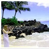 Ceremony, Reception, Flowers & Decor, Destinations, white, blue, silver, Hawaii, Wedding, Musician, Music, Guitar, Violin, Maui, Quartet, Classical, Moss, String, Duo, Violinist-, Duets, Cambria moss, maui wedding violinist, Cambria