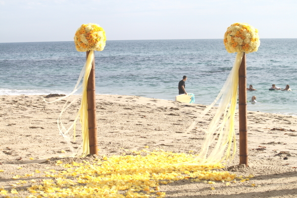 Ceremony, Flowers & Decor, white, yellow, Ceremony Flowers, Flowers, Bamboo, Streamers, Art with nature floral design, Laguna beach, Surf and sand, Beach ceremony, Yellow and white, Sphere