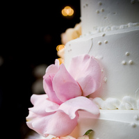 Reception, Flowers & Decor, Cakes, orange, pink, cake, Flowers