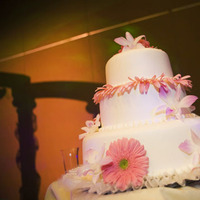 Cakes, white, pink, cake, Cathyflowercom