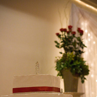 Cakes, red, cake, planner, Wedding, Snowflake, Edmonton, A modern proposal event planning