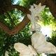 1375050461_small_thumb_96ac75201dd9a946616cf7c52d89e8a5
