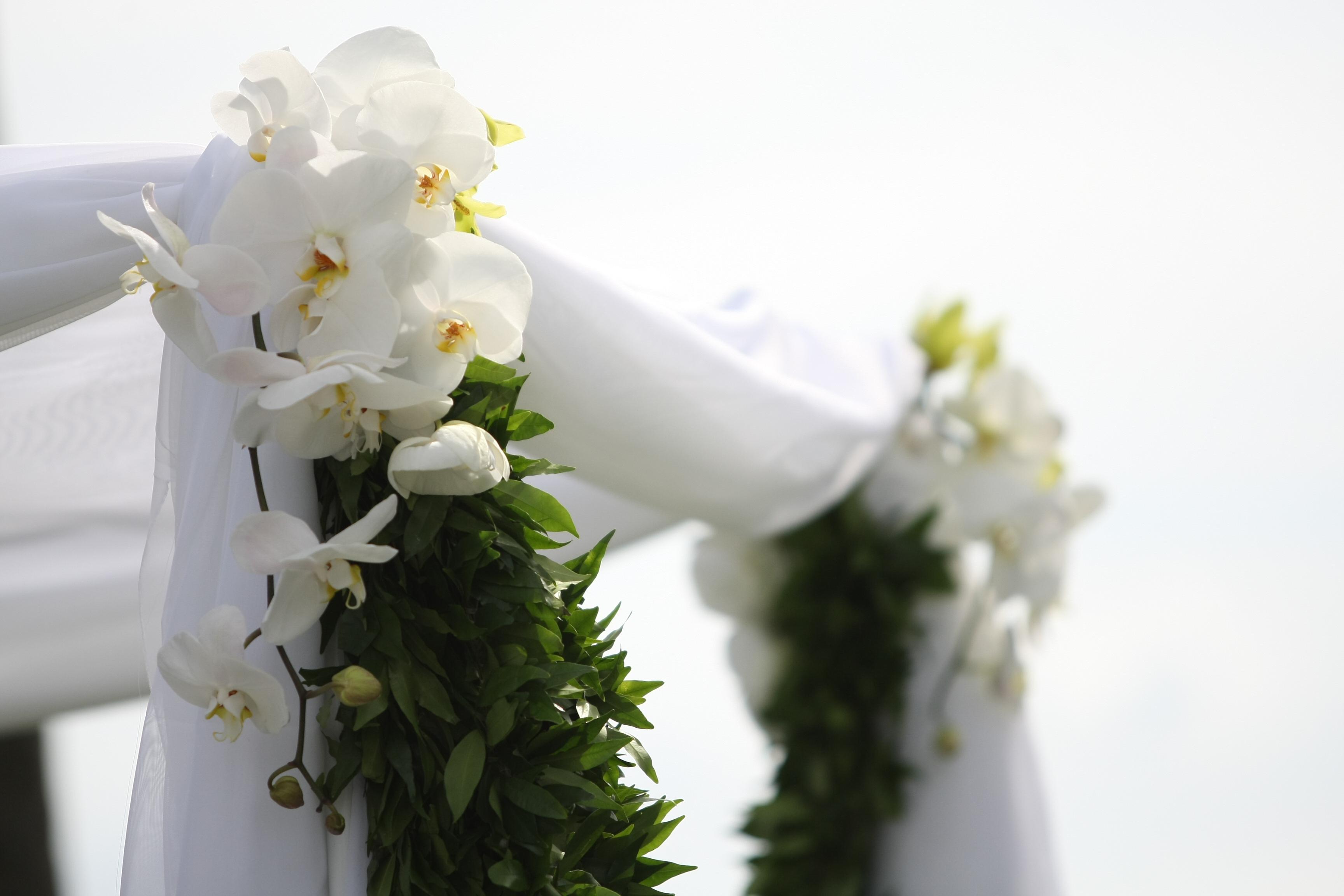 Ceremony, Flowers & Decor, white, green, Ceremony Flowers, Flowers, Decorations