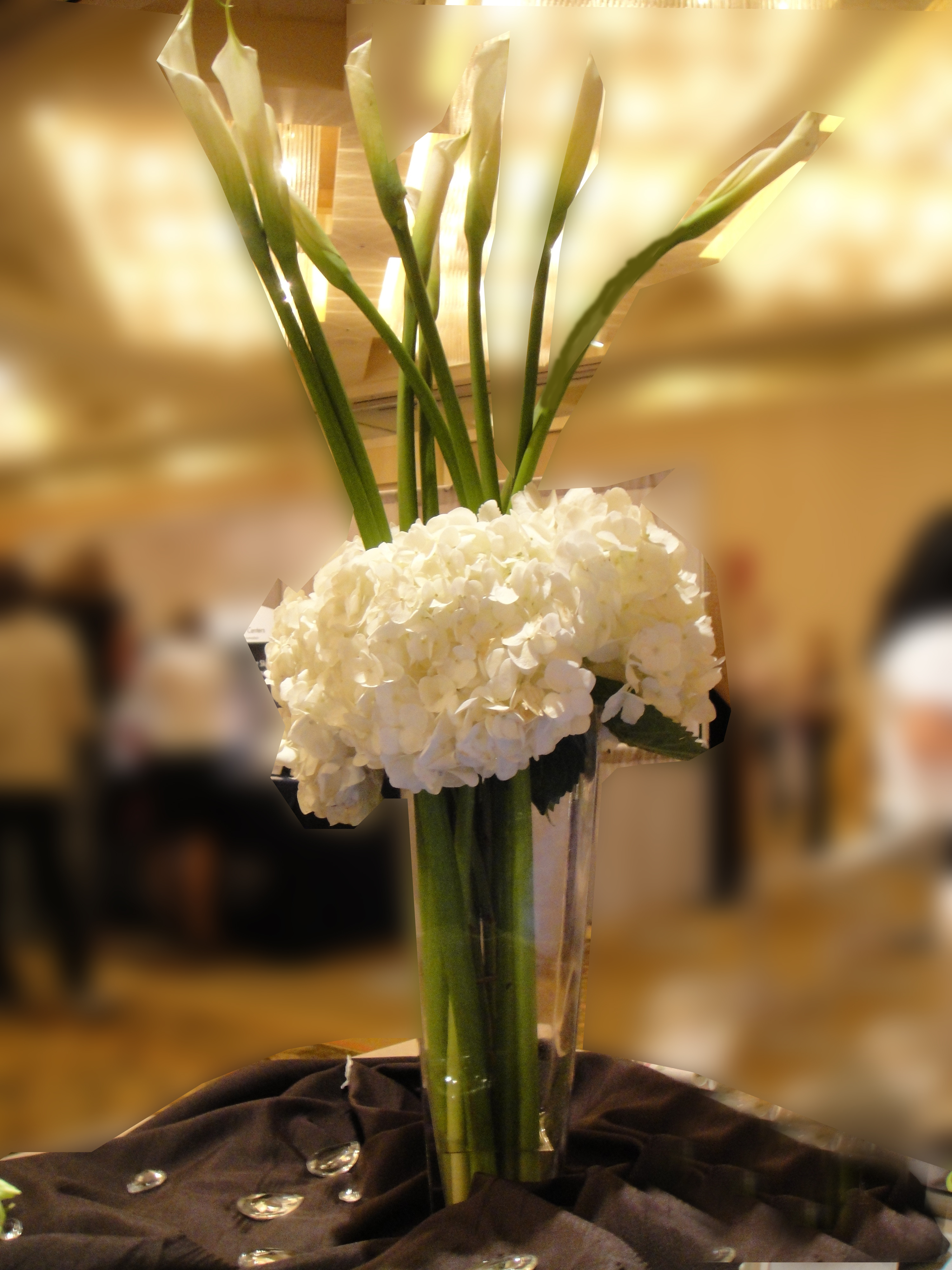 white, Calla, Lily, Hydrangeas, Dees petals