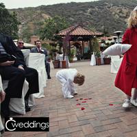 Ceremony, Flowers & Decor, Wedding Dresses, Fashion, red, dress, Flower, Girl, Ring, Bearer, C weddings