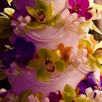 Cakes, yellow, purple, gold, cake, Brett matthews photography