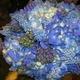 1375051114 small thumb 4623c992e6e7f0a349f62d89b1fbf7ef
