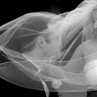 Veils, Photography, Fashion, white, black, Bride, Groom, Veil