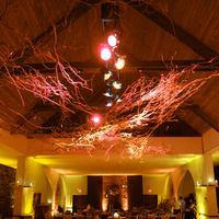 Reception, Flowers & Decor, Lighting, Dance, Dancing, Floor, Marc fisher entertaiment