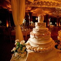 Reception, Flowers & Decor, Cakes, cake, Lighting, Wedding, Marc fisher entertaiment
