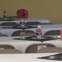 Reception, Flowers & Decor, pink, black, silver, Centerpieces, Flowers, Centerpiece