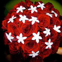Flowers & Decor, white, red, Flowers, Roses, Stephanotis