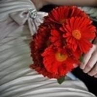 Flowers & Decor, white, red, Bride Bouquets, Flowers, Bouquet, Bridal, Gerberas