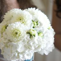 Flowers & Decor, Bridesmaids, Bridesmaids Dresses, Fashion, white, Bridesmaid Bouquets, Flowers, Bouquets, Flower Wedding Dresses