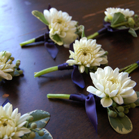 Flowers & Decor, white, blue, gold, Boutonnieres, Flowers, Boutonniere, Studio choo